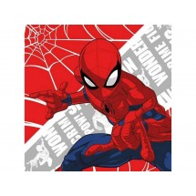 Magický ručníček Spiderman 30x30 cm