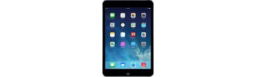 "iPad mini (7.9"")"
